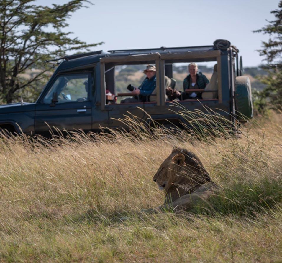 Uganda Safaris Holidays